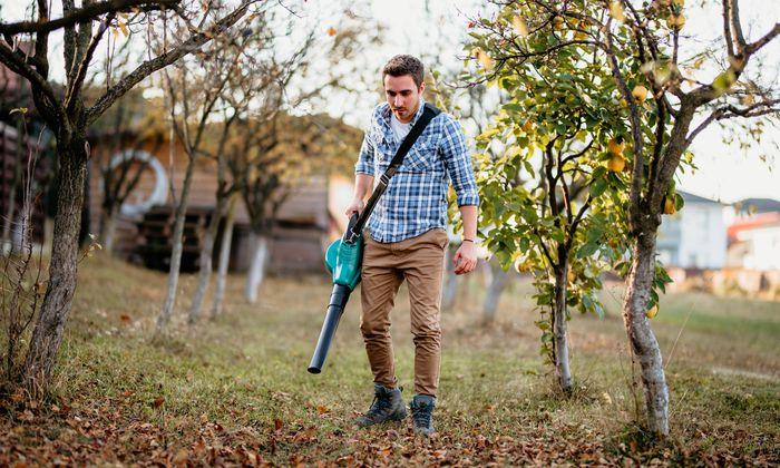 Ob mit dem Rechen oder Gebläse: Laub sollte vom Rasen entfernt und kompostiert werden.