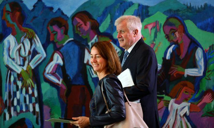 Immer mehr Politiker, vor allem von SPD und Grünen, fordern eine Beobachtung der AfD durch den Verfassungsschutz. Im Bild Justizministerin Katarina Barley mit Innenminister Horst Seehofer.