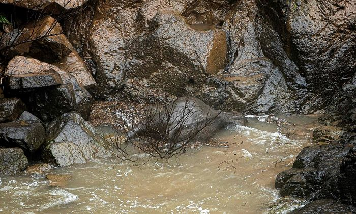 Ein verendeter Elefant beim Wasserfall Haew Narok.