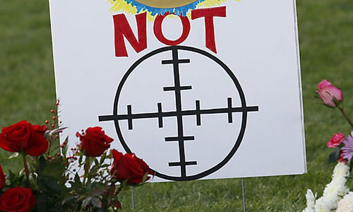 Tucson-Attentat: Kritik an Palins