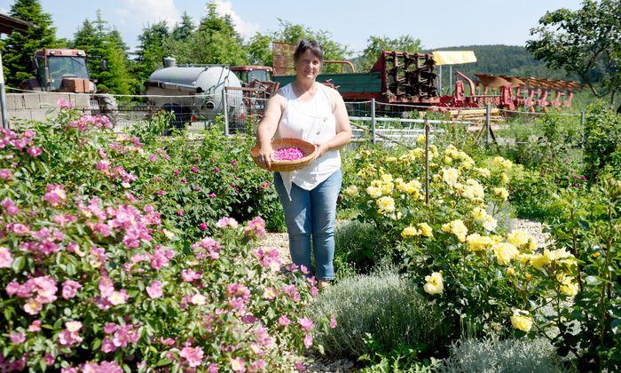 Elke Piff hat in ihrem Garten ein Rosenlabyrinth angelegt. Aus den Blütenblättern macht sie ebenso Sirup wie aus Salbeiblüten.