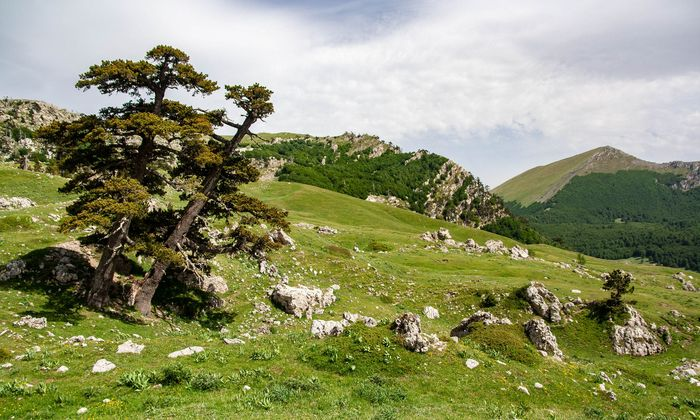 Sila-Nationalpark