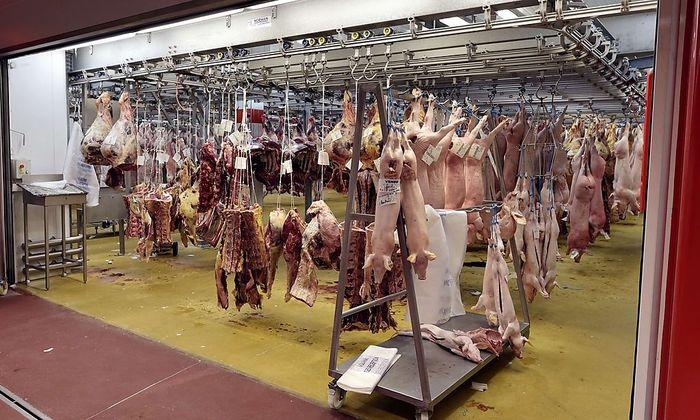 Um den Schweinefleisch-Preis zu stabilisieren, hatte die EU die Lagerung finanziell gefördert.
