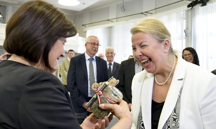 Das Verhältnis zwischen Sozialministerin Beate Hartinger-Klein (rechts) und Arbeiterkammer-Präsidentin Renate Anderl ist nicht mehr ganz so harmonisch wie bei der Wahl der AK-Präsidentin.