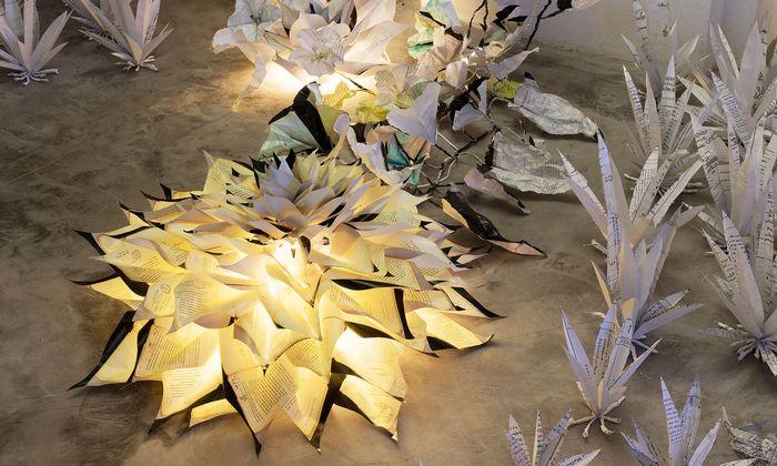 Material der Bildhauerschulen-Recherche verwandelte Pille-Riin Jaik zu exotischen Gewächsen.
