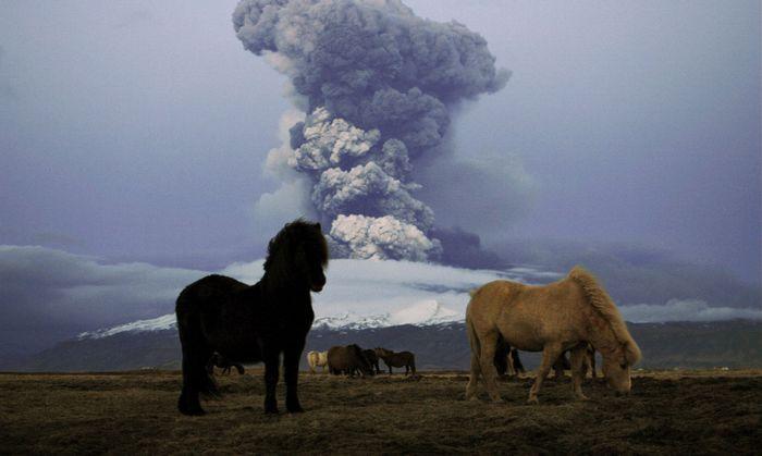 Der Ausbruch des Eyjafjallajökull in Island war relativ klein, aber er legte 2010 den Flugverkehr über Europa eine Woche lang lahm.