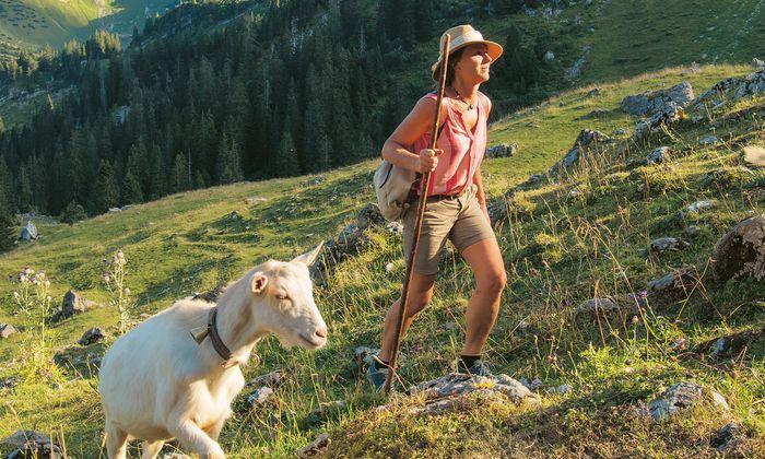 Martina Fischer verbringt seit acht Jahren jeden Sommer als Sennerin auf der Alm.