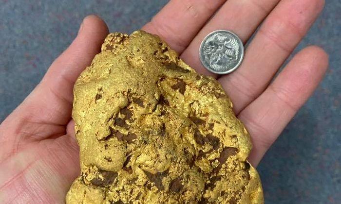 Das fast eineinhalb Kilogramm schwere Nugget.