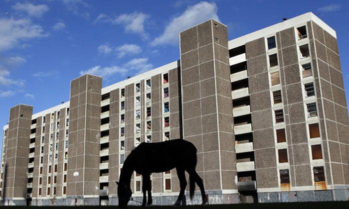 300.000 Neubauten leer Iren Pferde
