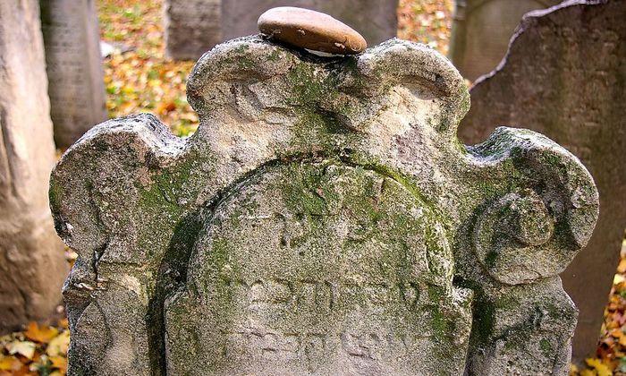 Jüdischer Friedhof Seegasse: Vergessene Grabsteine entdeckt