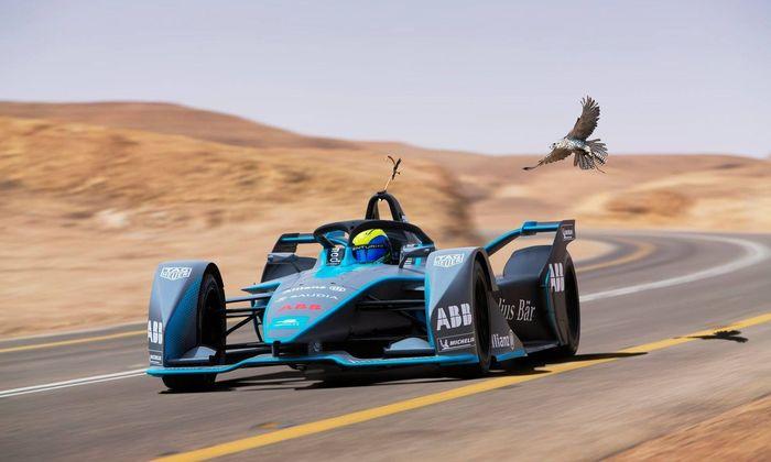 Tierwelt gegen Elektro-Rennwagen