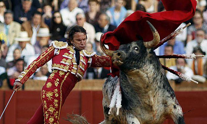 Spanischer Torero Stier aufgespiesst