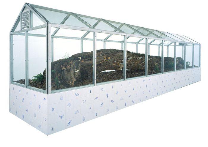 Das Schauterrarium des Künstlers Mark Dion wird im Foyer des neuen Biozentrums in St. Marx errichtet.