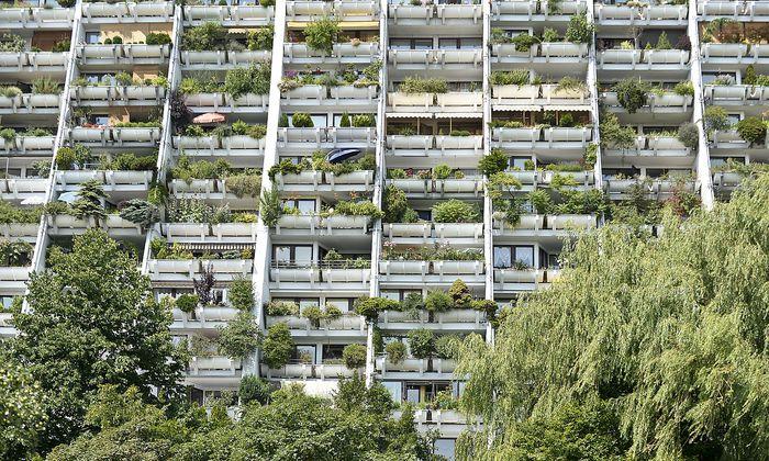 Das Wohnthema war bisher fast so etwas wie SPÖ-Eigentum.