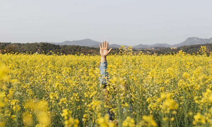 Allergische Erkrankungen sind das häufigste Gesundheitsproblem im Kindesalter.