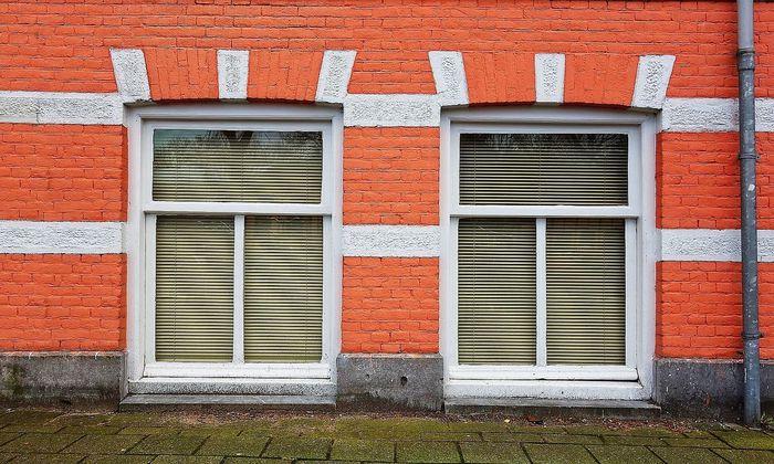 Schimmelbefall in der Wohnung und im Haus schädigt nicht nur die Bausubstanz.