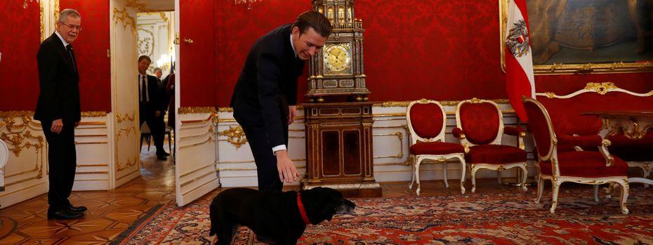 Der eine will spielen, der andere regieren: Alexander Van der Bellens Hund, Kita, begrüßte am Donnerstag Sebastian Kurz.  / Bild: (c) REUTERS