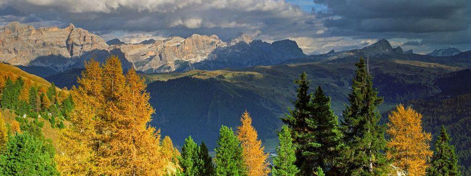 Blick über Covara auf die Dolomiten im Herbst. / Bild: S. Derder / picturedesk.com