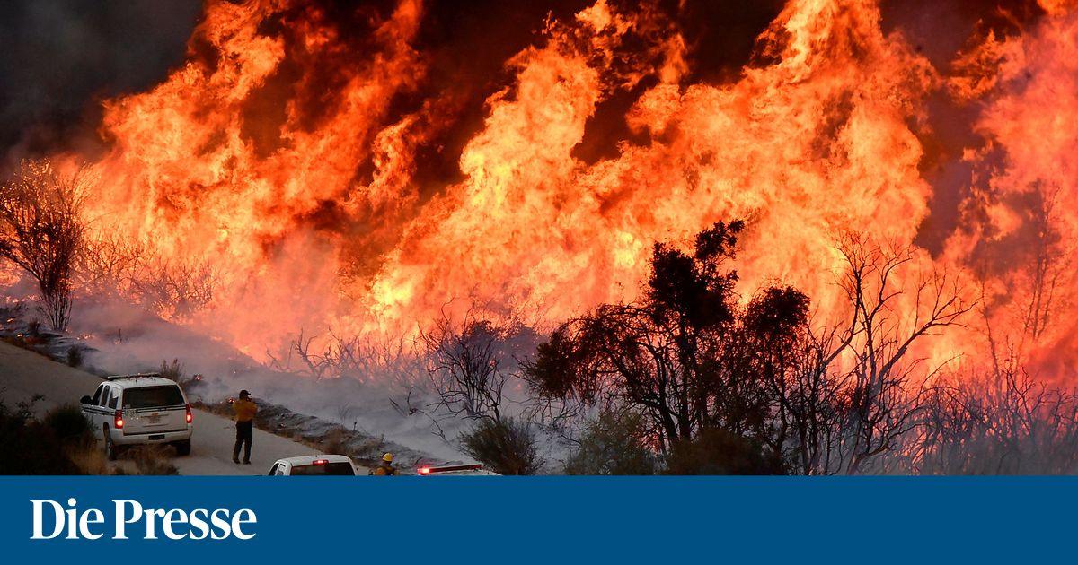feuerwehrmann-stirbt-bei-einsatz-gegen-flammen-in-kalifornien