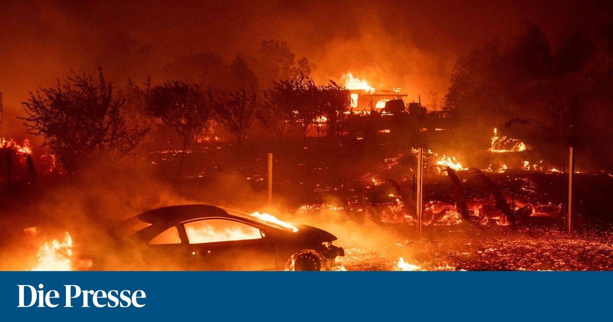 """Muertos, heridos y miles en la carrera """"DiePresse.com"""