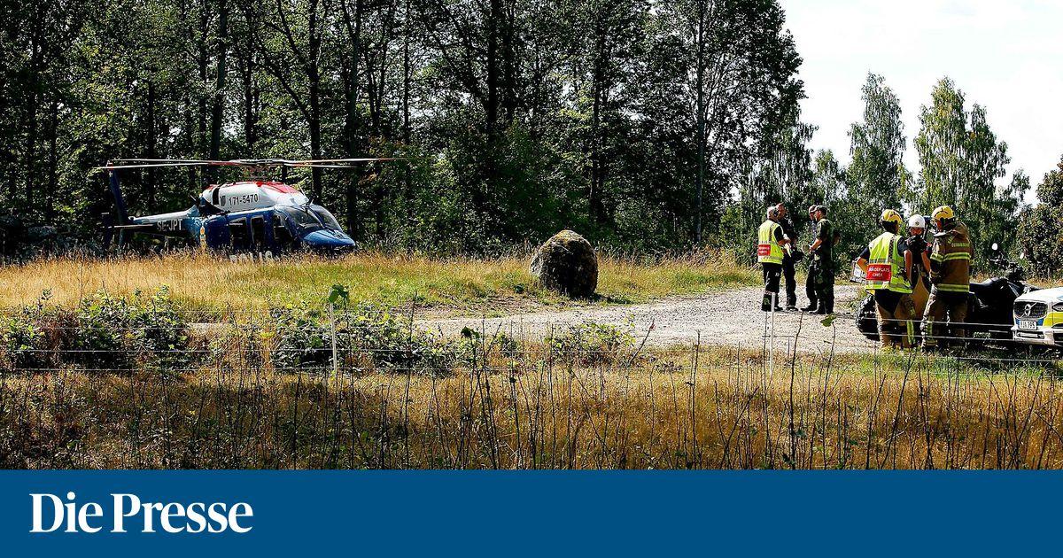 schwedisches-kampfflugzug-geriet-in-vogelschwarm-und-st-rzte-ab