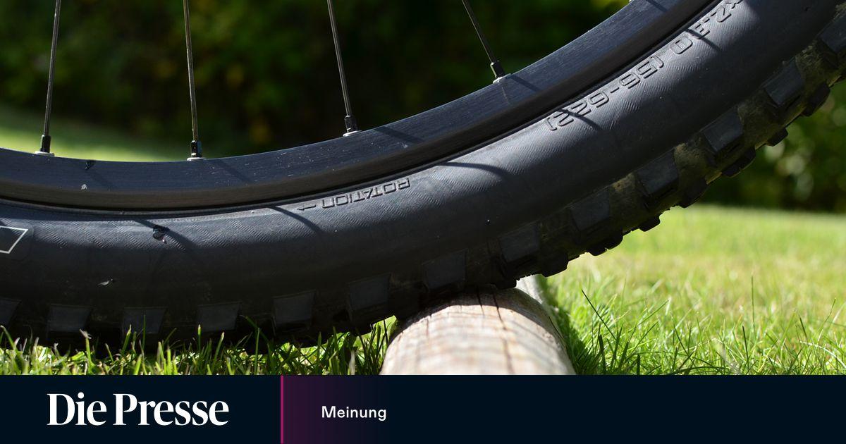 Mountainbike: 29-Zoll-Räder für (fast) alle - DiePresse.com
