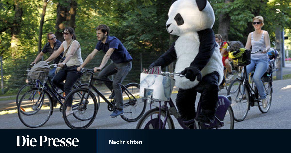 Festnahme wegen Handys? Was man auf dem Fahrrad darf und was