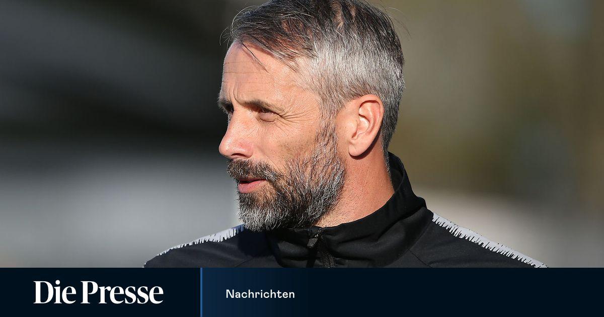 Neuer Trainer Mönchengladbach
