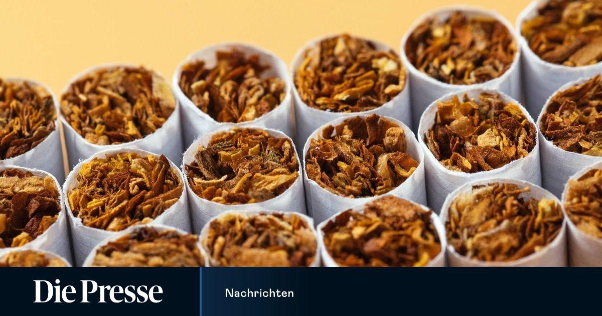 Ungarns Steuerfahndung hob illegale Zigarettenfabrik aus